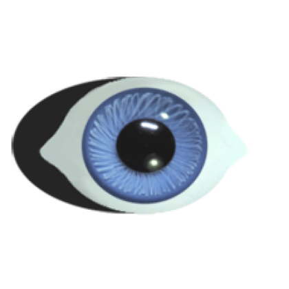 Paperweight-bru-eyes-superior-tweaked-lightblue.