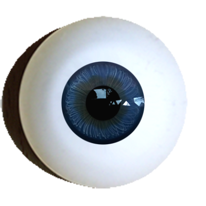 Iris-muscle-eyes-standart-offer-dark-blue