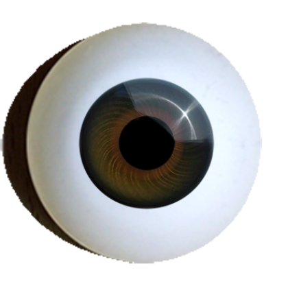 Iris-muscle-eyes-standart-offer-topaz