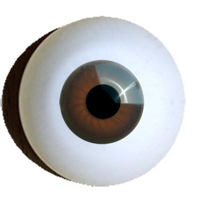 Eyes-for-crafting-round-light-brown.